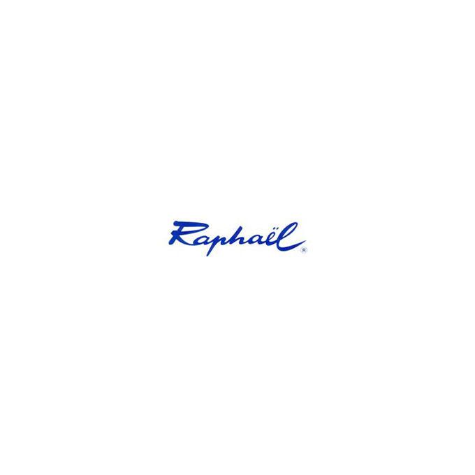 groupe_max_sauer_sennelier_pinceaux_raphael_logo