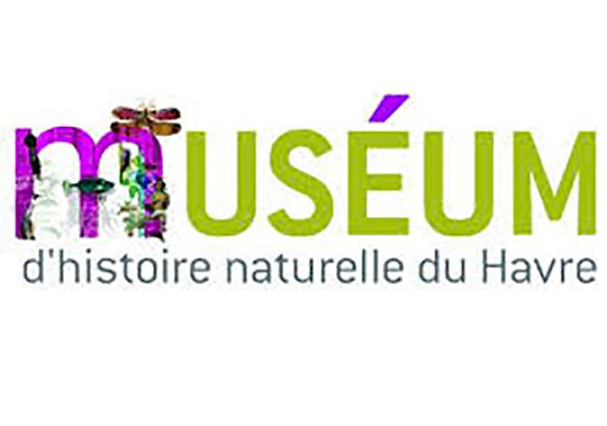 musee_dhistoire_naturelle_du_havre